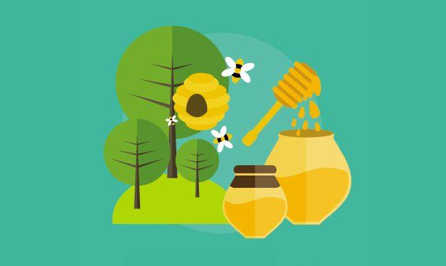 Инвентарь пчеловода. Обзор электро и пневмоинструмента